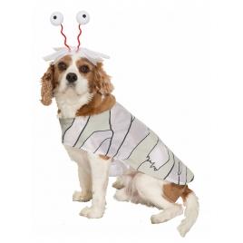 Disfraz para perro momia