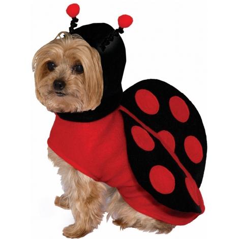 Disfraz para perro mariquita del bosque
