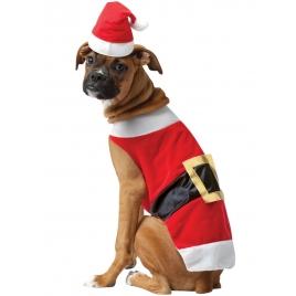 Disfraz perro papa noel